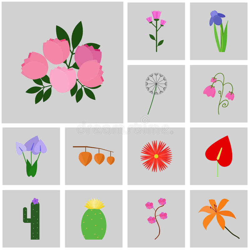 Icons gray, square, . Vector icon set flower. Icon peony, pink royalty free illustration