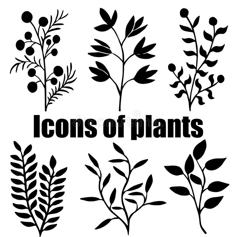 Icons of plants. Herbarium. Grass. Plants. Silhouettes. stock illustration