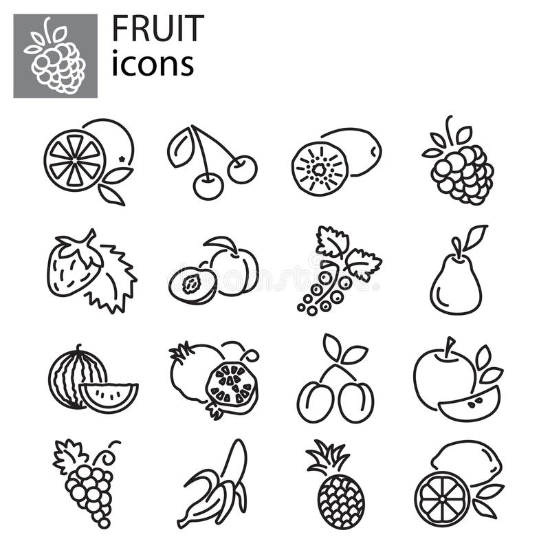 Icons set - Fruit vector vector illustration