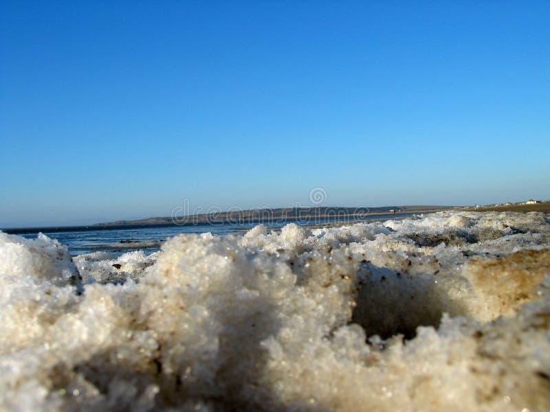 Icy Beach Free Stock Image