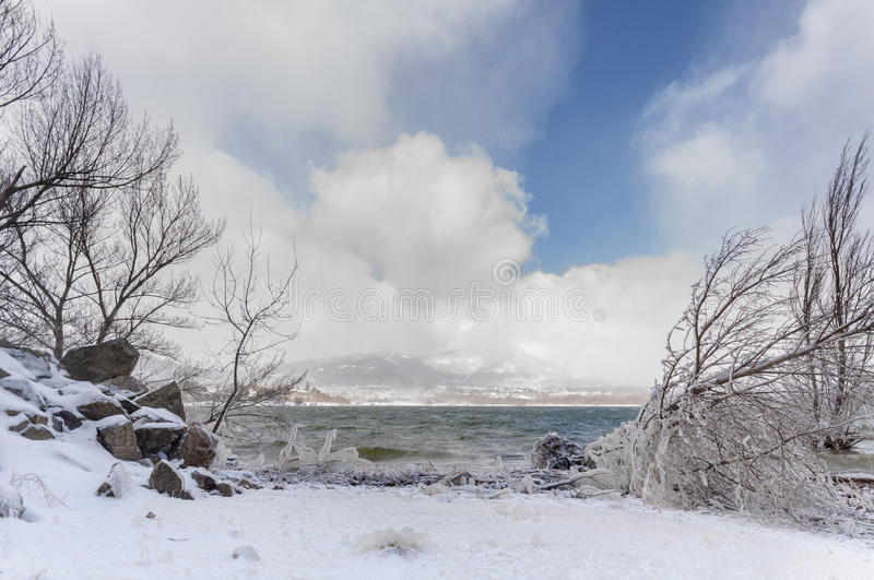 Icy beach. In cold winter day royalty free stock image