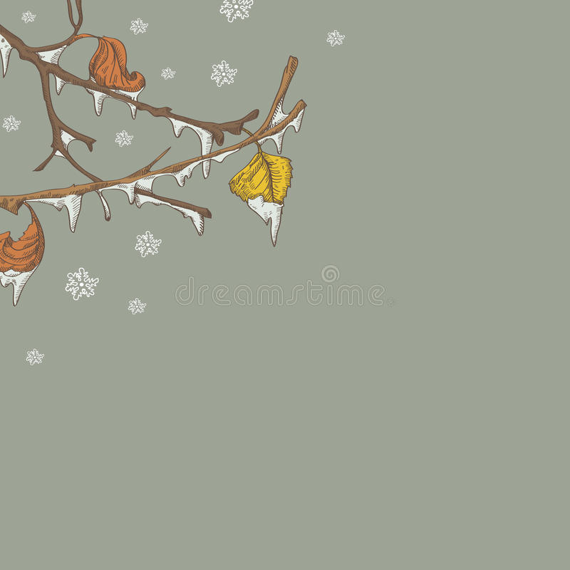 Download Icy branch stock vector. Illustration of snowflakes, frozen - 27530357