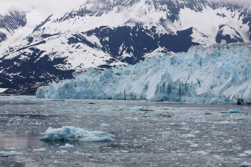 Icy Hubbard Bay and Glacier, Alaska. A view of the many icebergs in Disenchantment Bay that have broken free of mighty Hubbard Glacier in Alaska. Hubbard Glacier royalty free stock photo