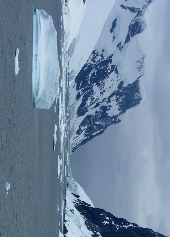 Icy liggande i Antarktis royaltyfria foton