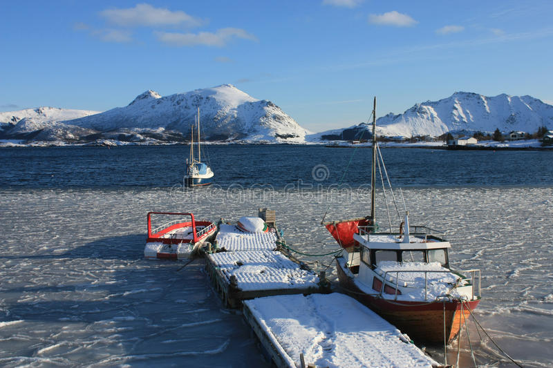 Icy Lofoten's fjord royalty free stock images