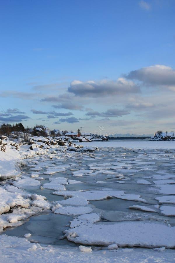 Icy Lofoten sea. Icy sea near the Lofoten's village of Ballstad royalty free stock photos