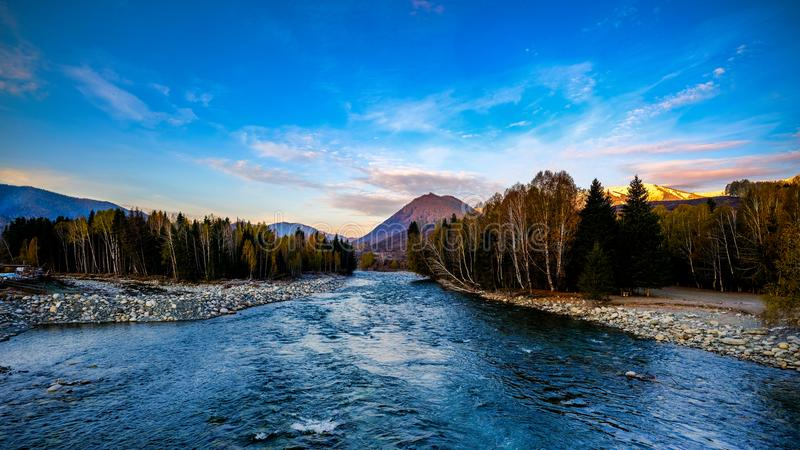 Icy river and bulrush in Northwest China stock images