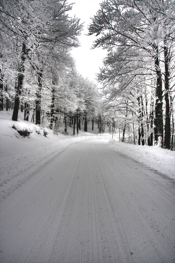 Icy rural road through forest. Scenic view of snow covered icy road through forestry, winter scene royalty free stock image