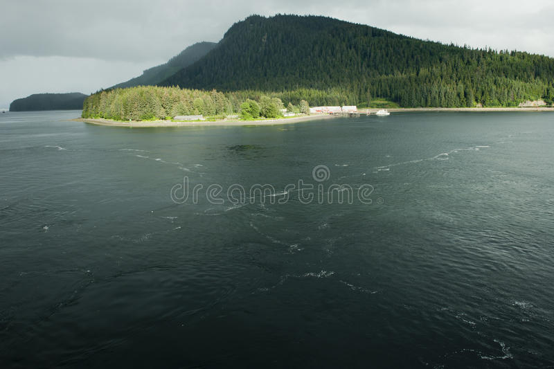 Icy strait point Alaska royalty free stock images