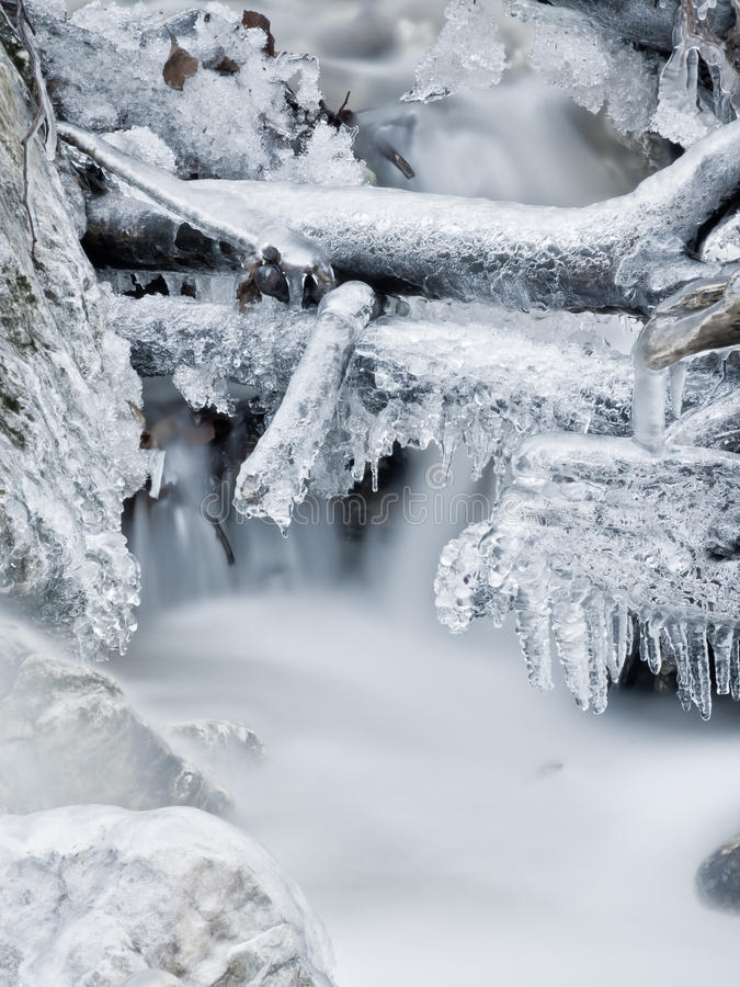 Free Icy Stream Royalty Free Stock Image - 16428216