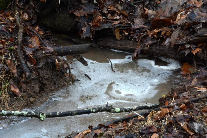 Icy stream in winter royalty free stock photos