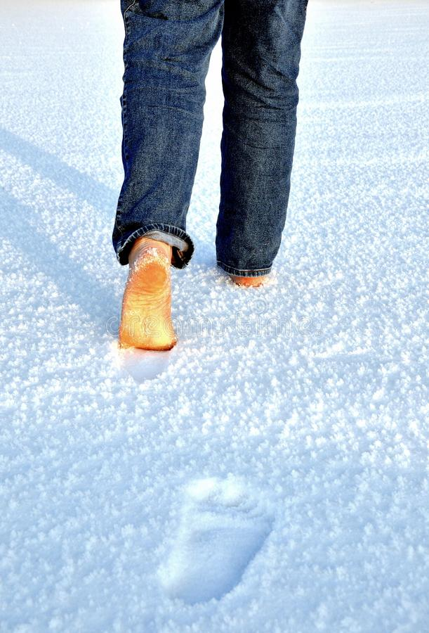 Free Icy Walk Royalty Free Stock Image - 15100146