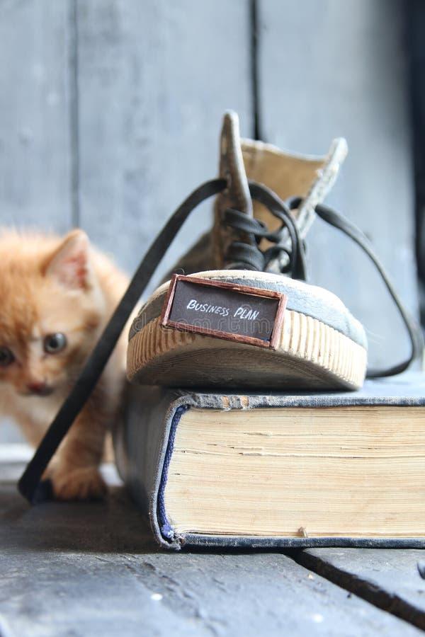 idé för affärsplan, etikett och en sko med en kattunge royaltyfri fotografi