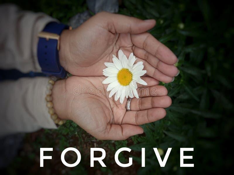 Idécitat - förlåtelse Med en vacker vit drålblomma i en ung kvinna med öppna händer och blommande bakgrund Ord om förlåtelse arkivbild
