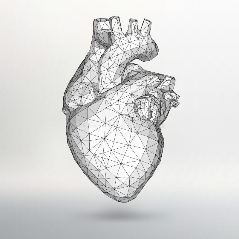 Idérik begreppsbakgrund av den mänskliga hjärtan Vektorillustration eps 10 för din design arkivfoto