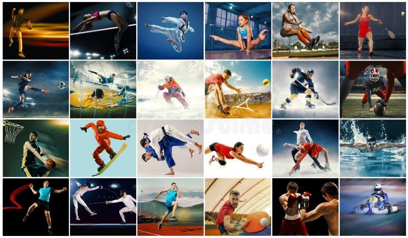 Idérik collage som göras med olika sorter av sporten arkivfoto