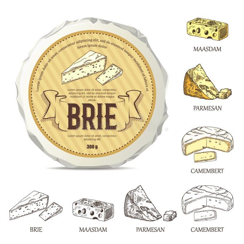 Idérik klistermärke för brie på modell för rund ost Vektorillustration med tappningetiketten royaltyfri illustrationer