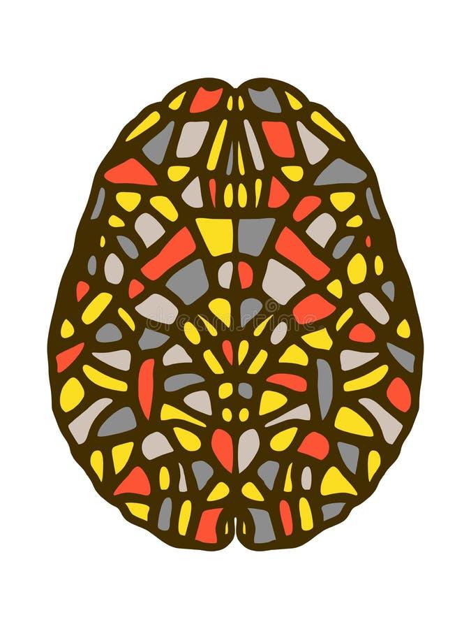 Idérik meningsillustration Stiliserade färgrika hjärnområden vektor illustrationer