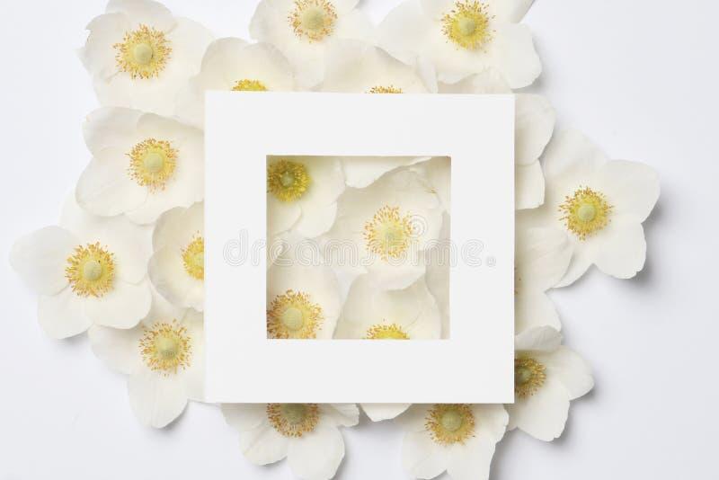 Idérik orientering som göras av färgrika vårblommor royaltyfria bilder