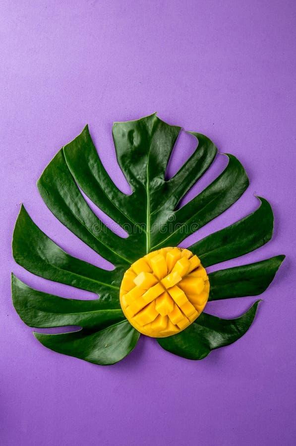 Idérik orientering som göras av mango för tropiska frukter för sommar och tropiska sidor på purpurfärgad bakgrund Lekmanna- lägen royaltyfri bild