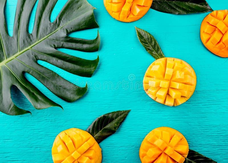 Idérik orientering som göras av mango för tropiska frukter för sommar och tropiska sidor på turkosbakgrund Lekmanna- lägenhet oli arkivfoton