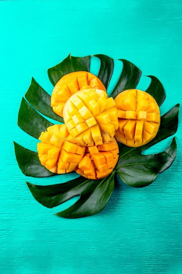 Idérik orientering som göras av mango för tropiska frukter för sommar och tropiska sidor på turkosbakgrund Lekmanna- lägenhet oli arkivbild