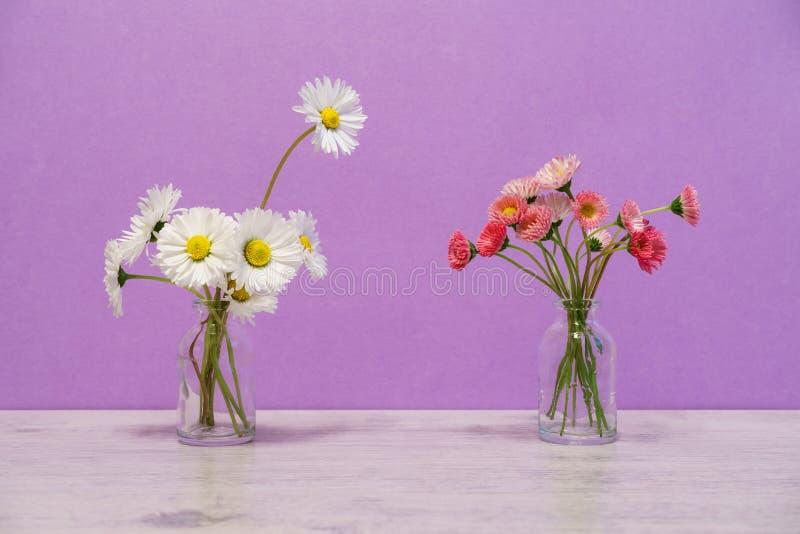 Idérik stilleben för sommar i minsta stil Vita och rosa Marg royaltyfri bild