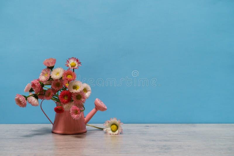 Idérik stilleben för sommar i minsta stil Vita och rosa Marg arkivbild