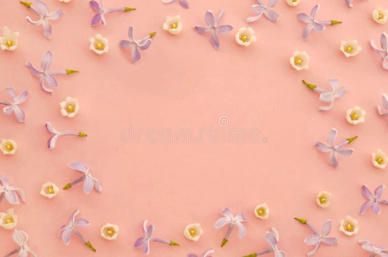 Idérik vårsammansättning med liljekonvaljen och lila blommor på pastellfärgad rosa pappers- bakgrund Blommande begrepp royaltyfria bilder