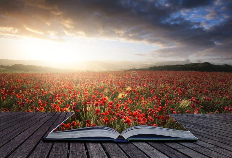 Idérika begreppssidor av boken som bedövar vallmofältet, landskap FN royaltyfri foto