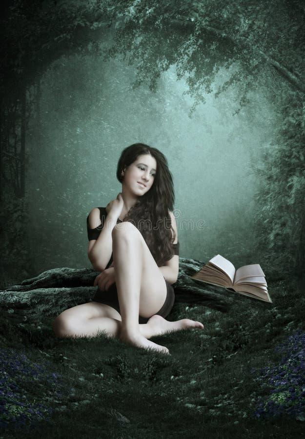 Idílio da floresta foto de stock