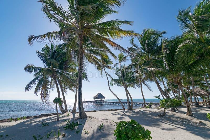 Idílio San Pedro Island Belize da praia imagens de stock royalty free