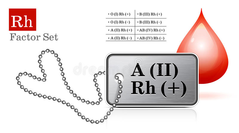 Download Id tag stock vector. Image of nobody, blank, aluminum - 22159603