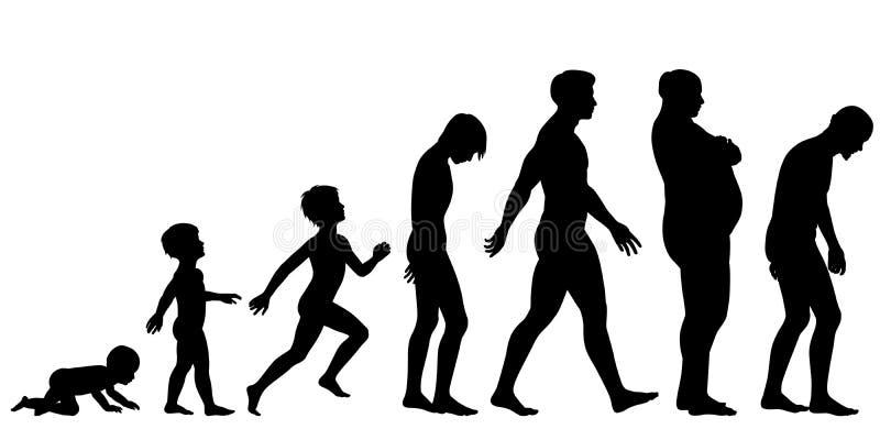 Idades do homem ilustração stock