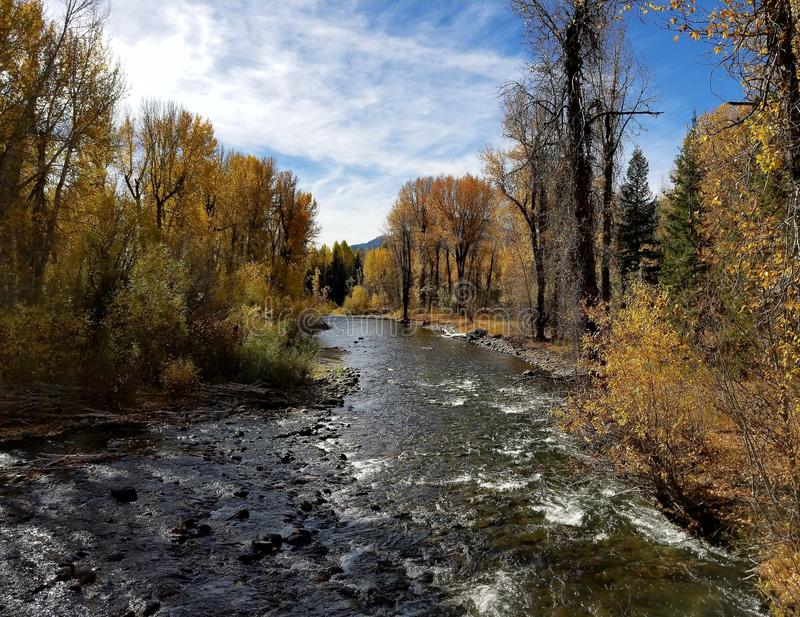 Idaho flod royaltyfri foto