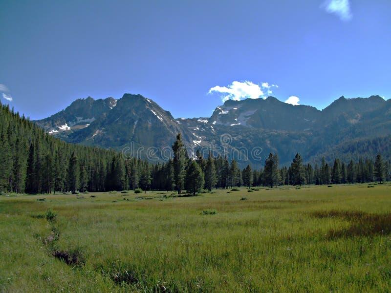 Idaho Sawtooth góry XII obrazy stock