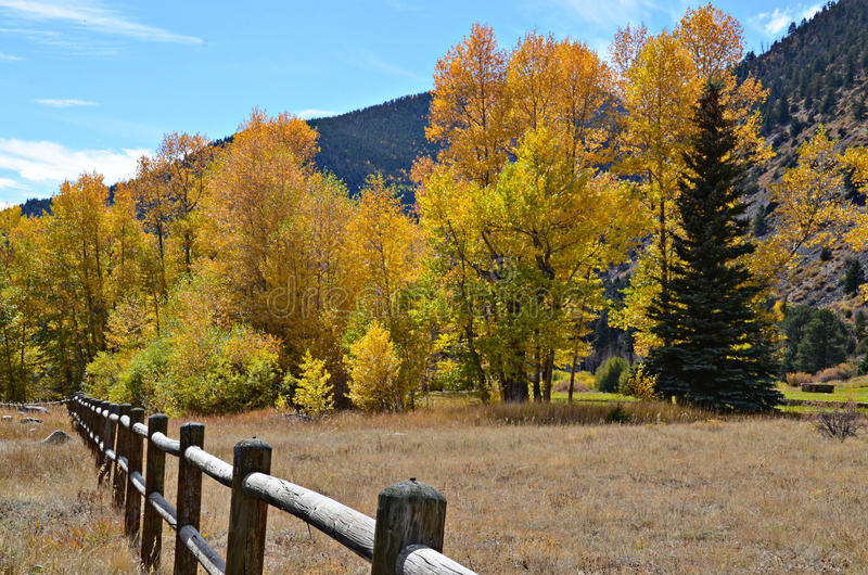 Idaho Springs, Colorado. Gorgeous fall colors in Idaho Springs, Colorado stock images