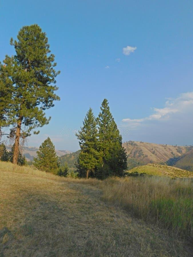 Idaho wzgórza obrazy royalty free
