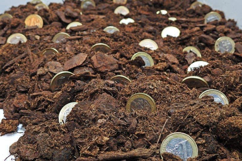 Idea abstracta de crecer el dinero foto de archivo