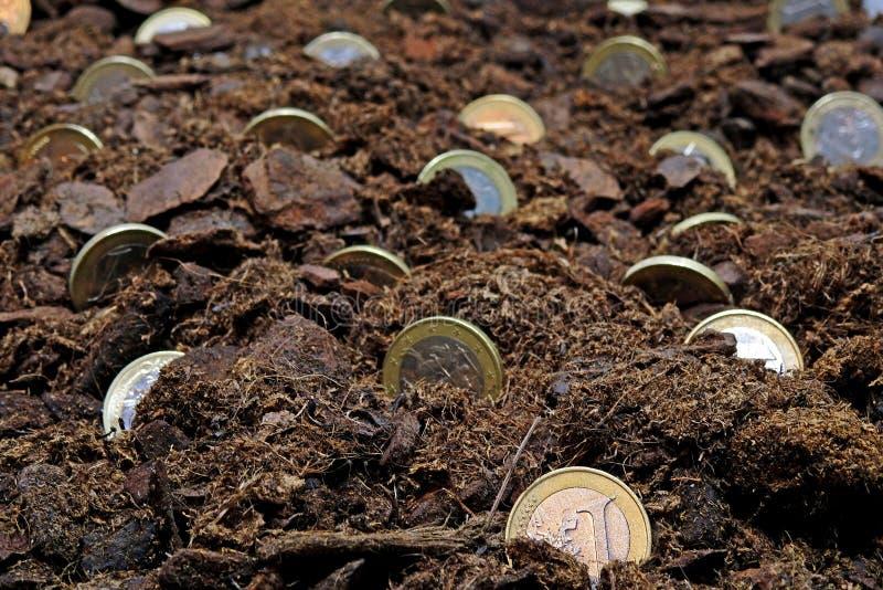 Idea abstracta de crecer el dinero imagen de archivo