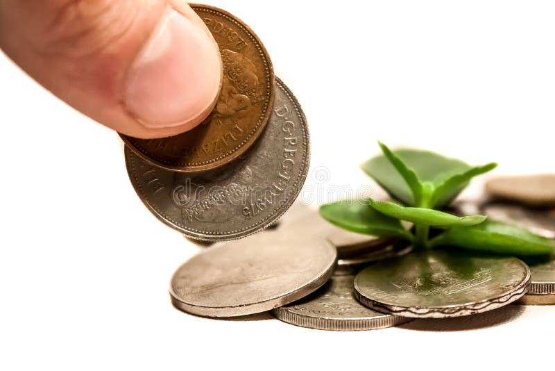 Idea cada vez mayor del dinero con las monedas de libra imagen de archivo libre de regalías