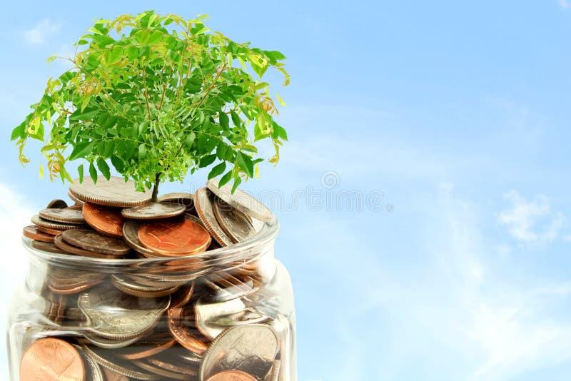 Idea di risparmio e crescente di concetto dei soldi immagini stock