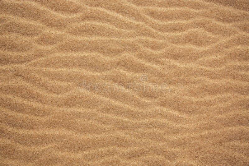 Ideal für Hintergründe Sandy-Strand für Hintergrund Beschneidungspfad eingeschlossen lizenzfreie stockfotos