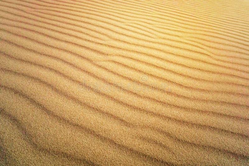 Ideal f?r Hintergr?nde Brown-Sand Hintergrund vom feinen Sand Gelbe Farbversion gelbe Düne in der Sonne Die Sonne scheint auf dem lizenzfreie stockbilder