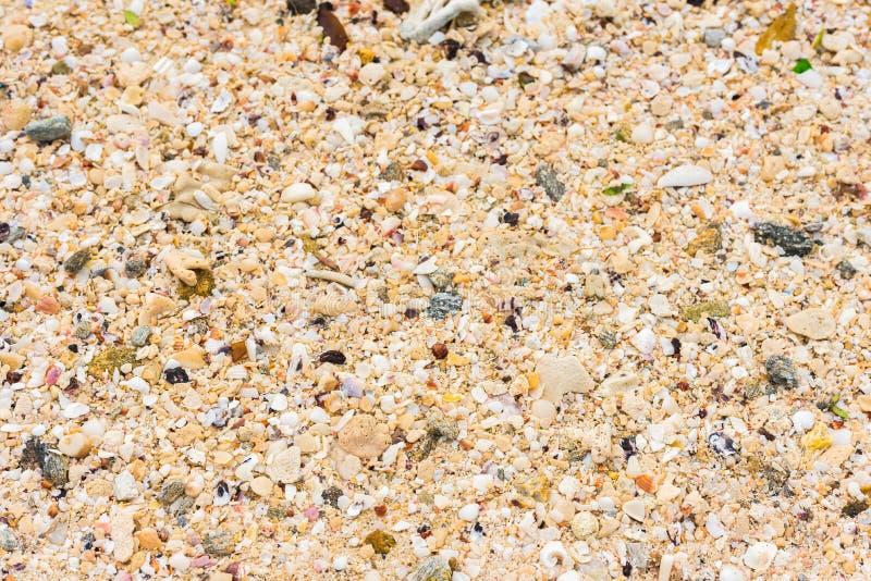 idealna konsystencja tło piasku Piaskowata plaża dla tła Odgórny widok Zakończenie zdjęcie royalty free
