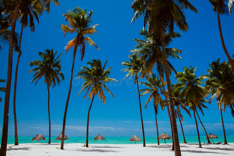 Idealnego whitesand oceanu błękitna plaża fotografia stock