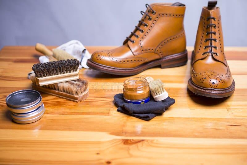 Ideas y conceptos del calzado Primer de Tan Brogue superior imagenes de archivo