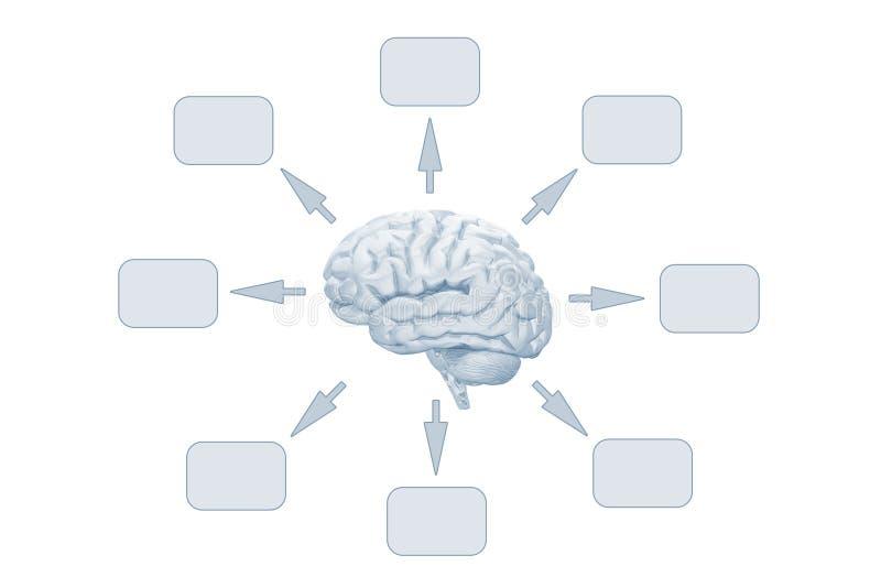 Ideeën van Hersenen royalty-vrije illustratie