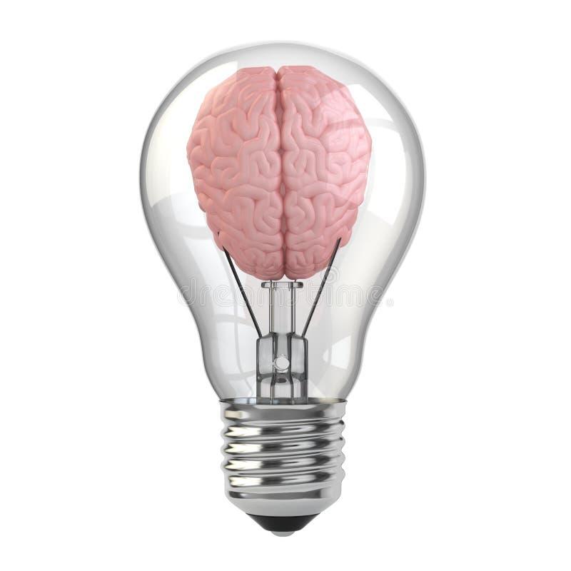 Idee. Hersenen in de gloeilamp. stock illustratie