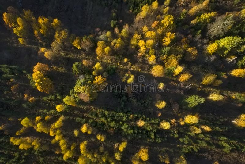 Ideia aérea da paisagem da queda da floresta do outono fotos de stock